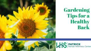 gardening-tips-for-a-healthy-back-13